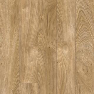 chester-oak-24418_0.jpg
