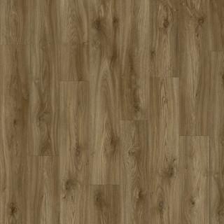 sierra-oak-58876.jpg