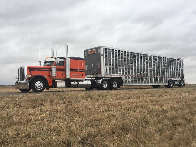 Cattle Truck- website.jpg