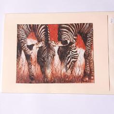 Karte Zebras