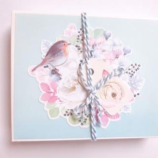 Geschenk-                                 Verpackung Art. 013