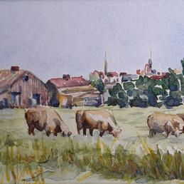 Breton Village Farm, France