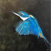 Native Bird 4