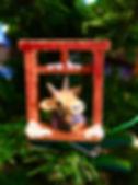 IMG_E7099.jpg