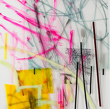 Sabres (Prickly Pears(, 2014, acrylic, spray paint, transparencies, wallpaper on Perspex, 290x120