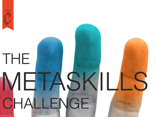 Review of Marty Neumeier's METASKILLS challenge