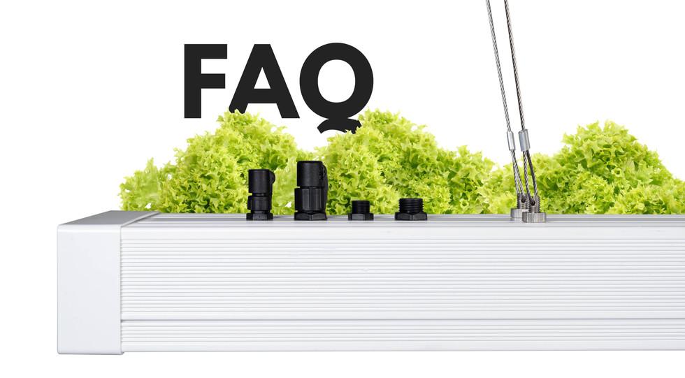 FAQ Graphic 3.jpg