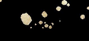 03_splatter_gold Kopie.png
