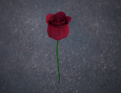 render, rose only.tif