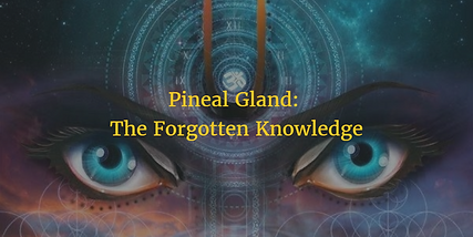 pineal-gland-detox.png