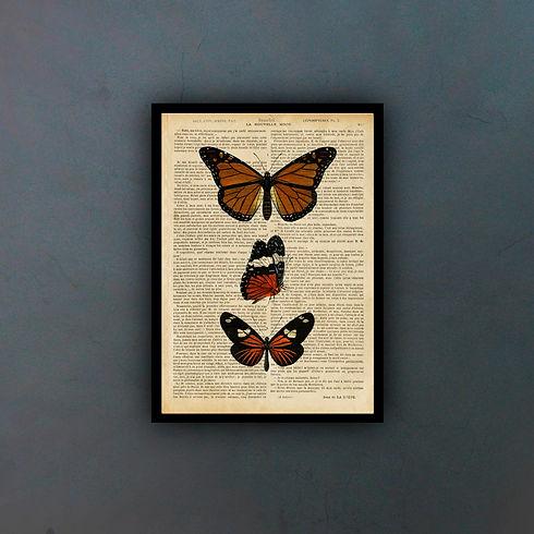butterflies5fondo.jpg