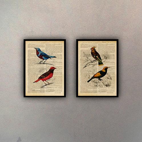 Set Pájaros Fondo Vintage (2 Cuadros)
