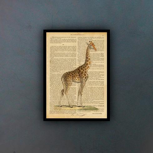 giraffefondo.jpg