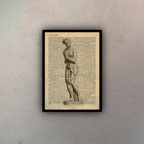 Desnudo Fondo Vintage