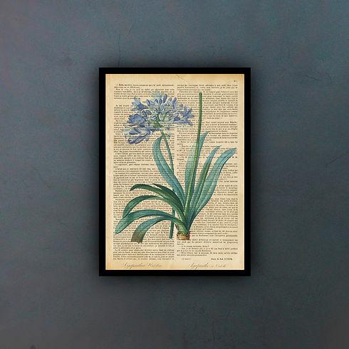flowerfondo.jpg
