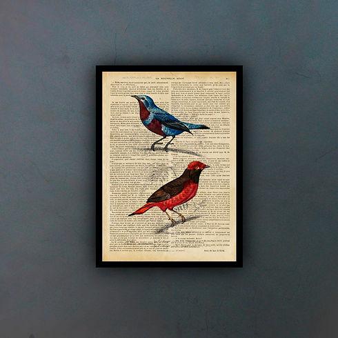 birds3fondo.jpg
