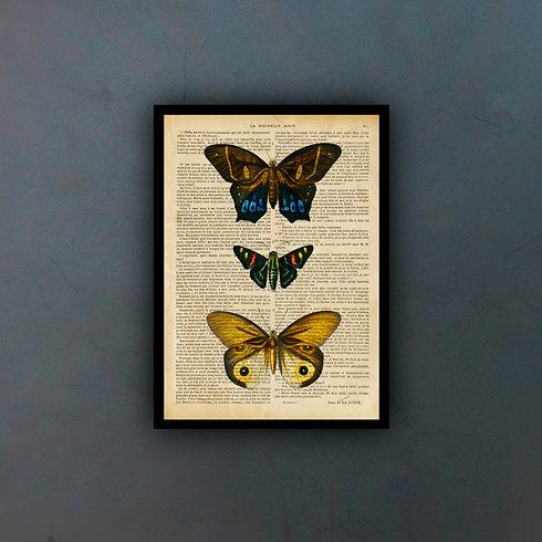 butterfliesfondo.jpg