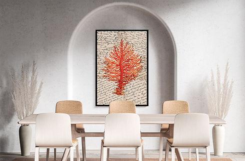 coralcontipografía-collection.jpg