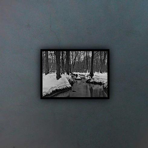 winter-5022294-(1)1_fondo2.jpg