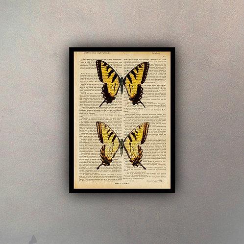 Mariposas V Fondo Vintage