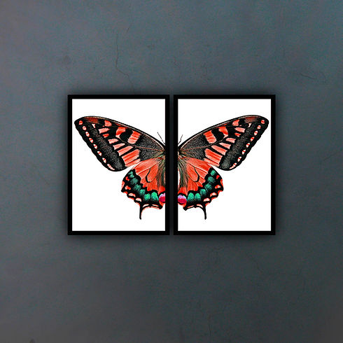 Díptico mariposa III fondo copia.jpg