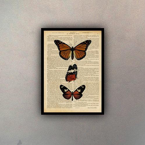 Mariposas II Fondo Vintage
