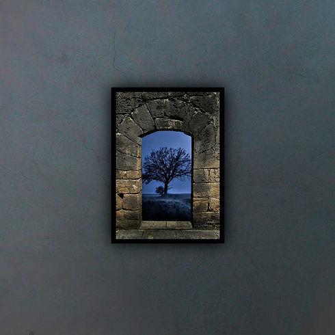 arch-29902451_fondo2.jpg