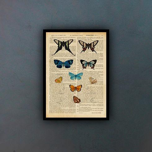 mariposasfondo.jpg