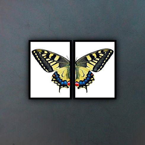 Díptico-mariposa-fondo.jpg