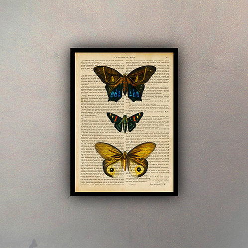 Mariposas IV Fondo Vintage