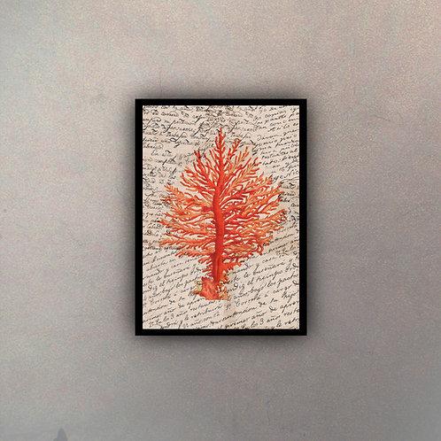 Coral Rojo Antique
