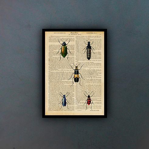 Insectsfondo.jpg