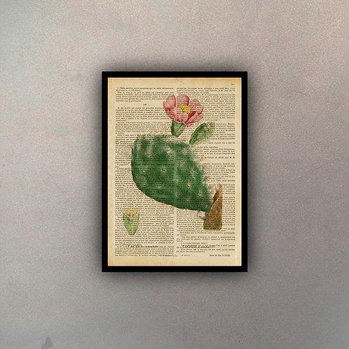 Cactus V Fondo Vintage
