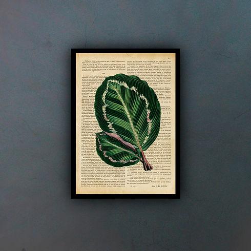 leaffondo.jpg