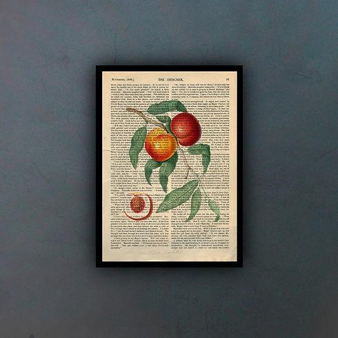 fruits3fondo.jpg