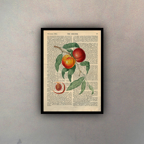 Frutos II Fondo Vintage