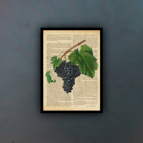 grapesfondo.jpg