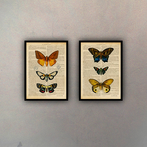 Set Mariposas Fondo Vintage (2 Cuadros)