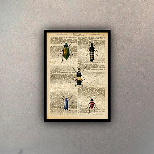 Insectos II Fondo Vintage