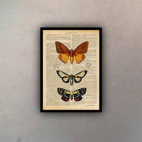 Mariposas III Fondo Vintage