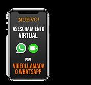 Asesoramiento Virtual logob_Mesa de trab
