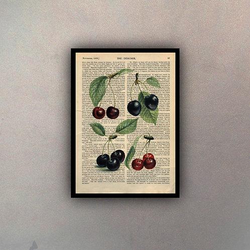 Frutos I Fondo Vintage
