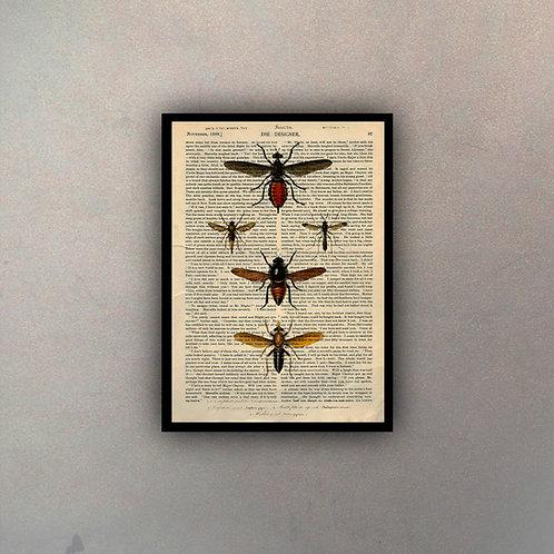 Insectos III Fondo Vintage
