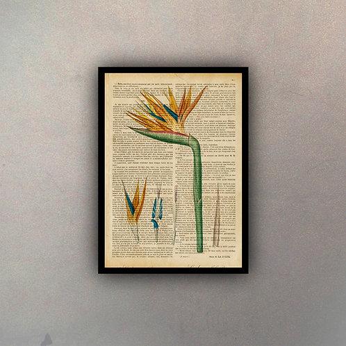 Flor I Fondo Vintage
