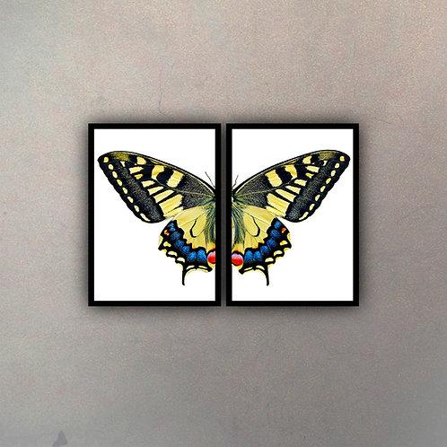 Díptico Mariposa III (2 Cuadros)