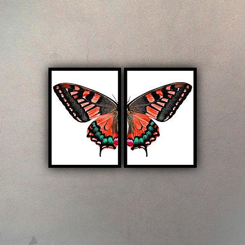 Díptico Mariposa II (2 Cuadros)