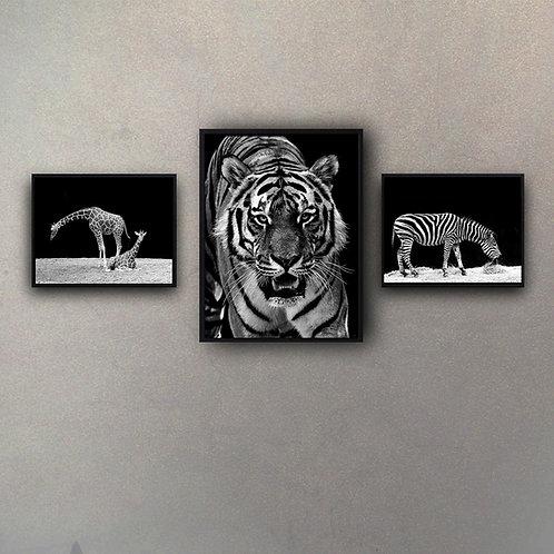 Animales (3 Cuadros)