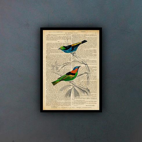 birdsfondo.jpg