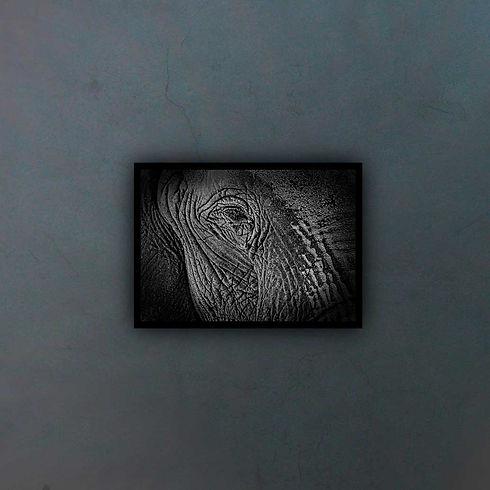 black-1819646_fondo2.jpg