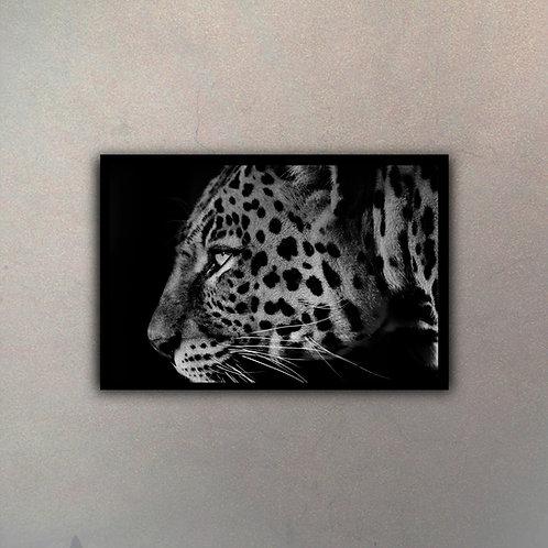 Leopardo Blanco & Negro